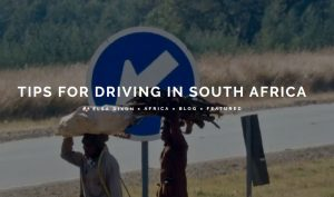 Tips to Driving in South Africa